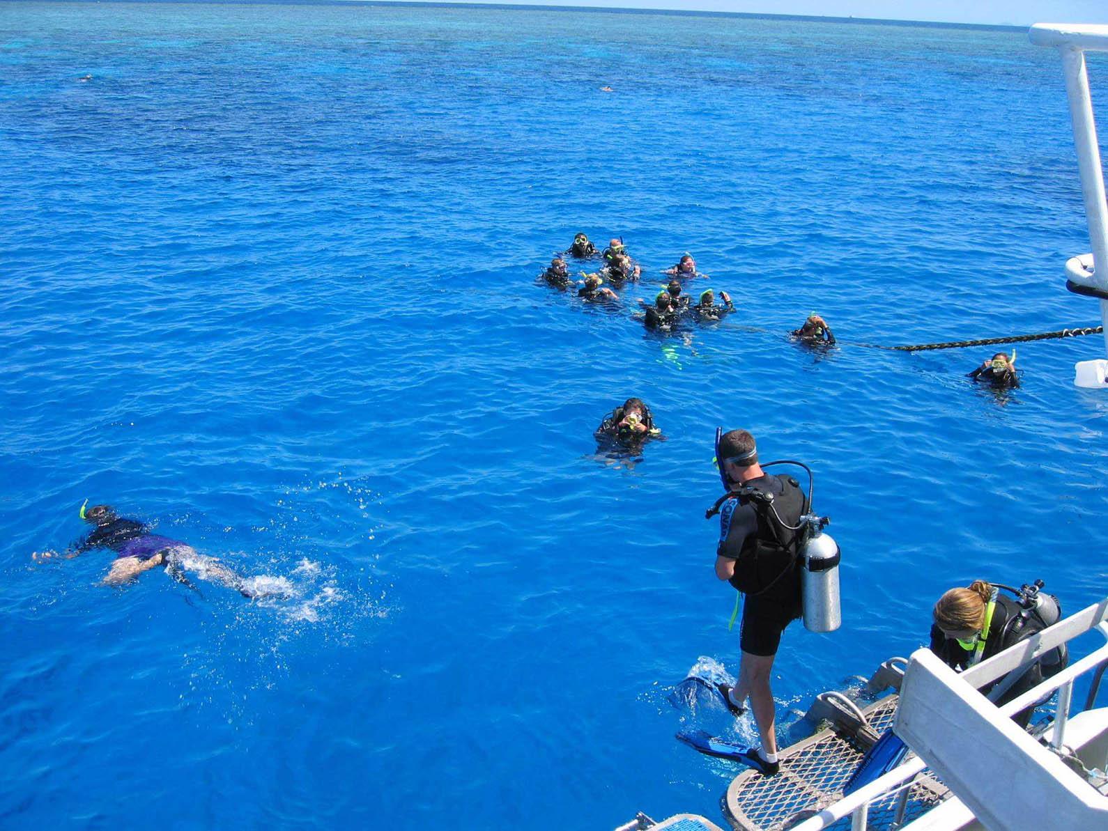 Reef01