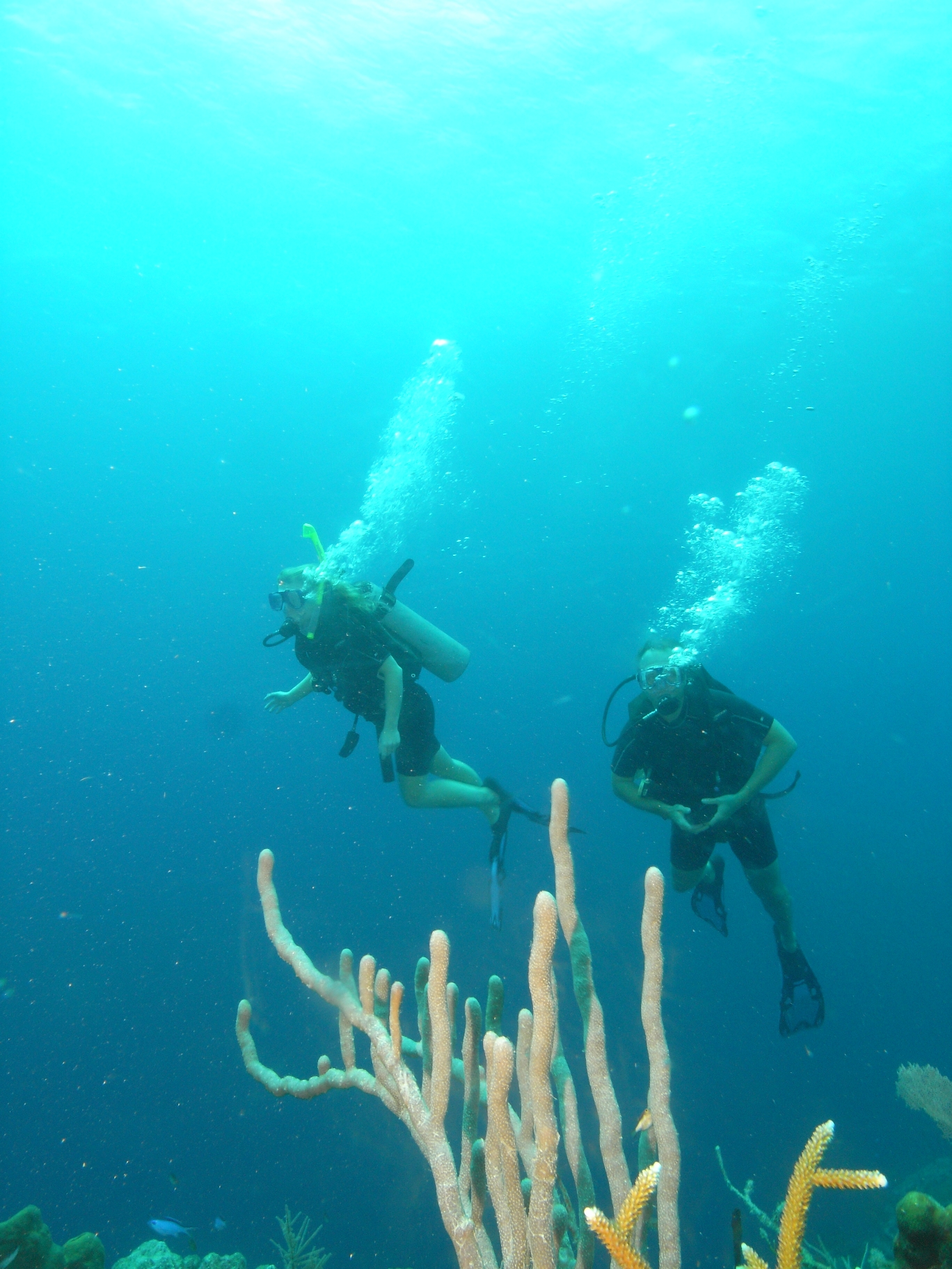 Belize Diving 02