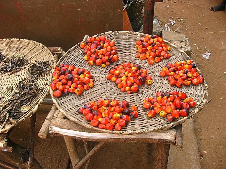 Benin_096e.JPG